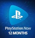 PSN NOW 12 Months